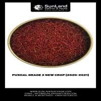 live_1604992325_Pushal_Grade_2.jpg